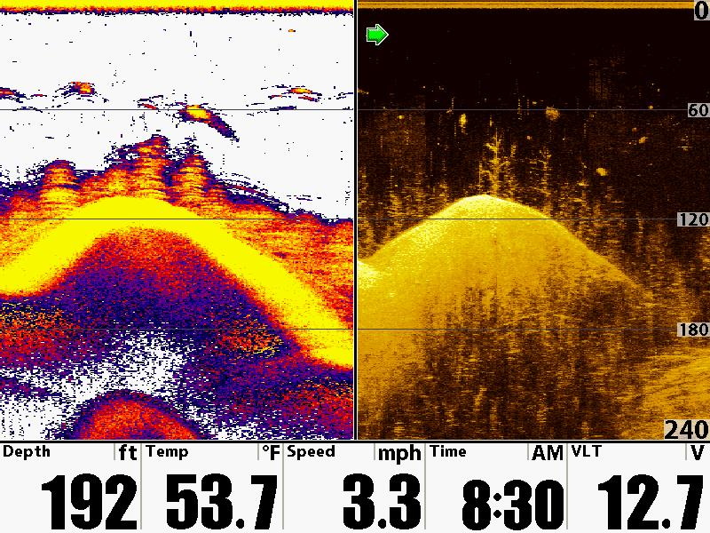 Lowrance Elite 5 HDI Fish Finder Down imaging